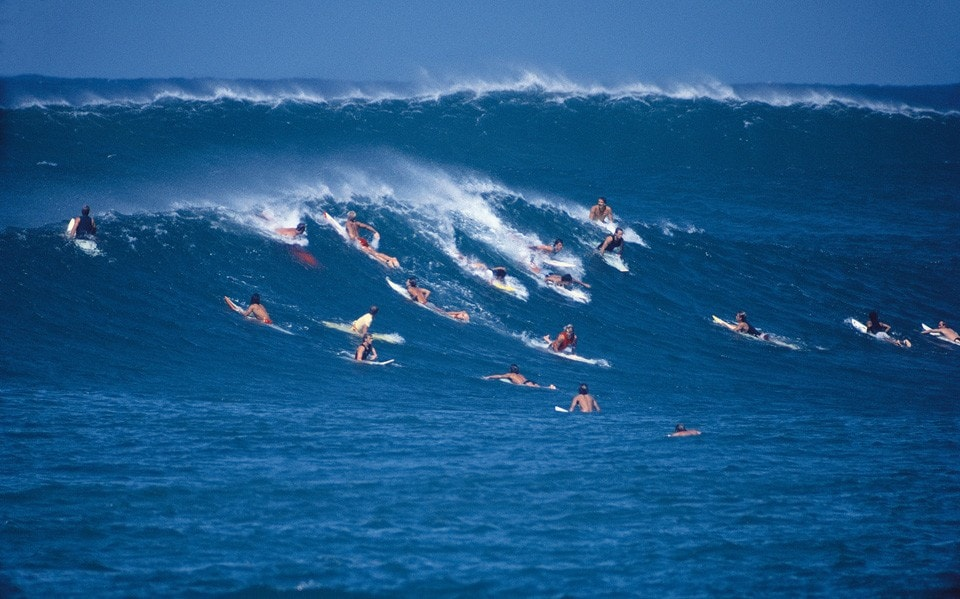 Luisa Worlds - Surf's up!