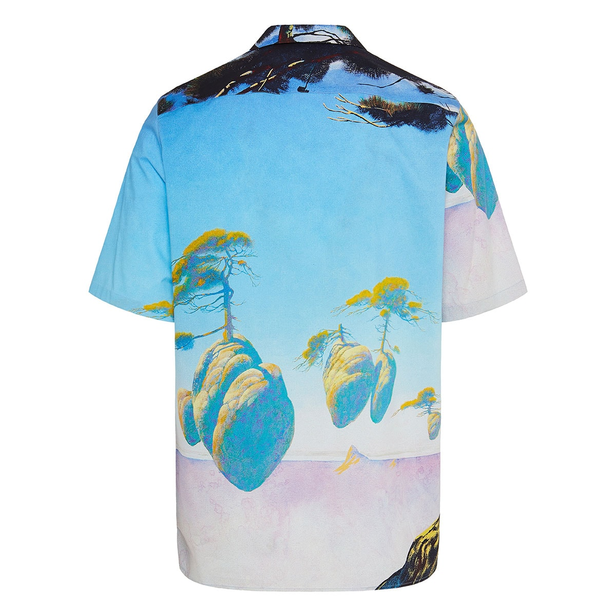 Floating Island oversized printed shirt