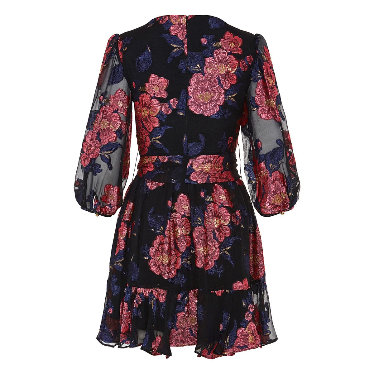 Anita floral-embroidered chiffon mini dress