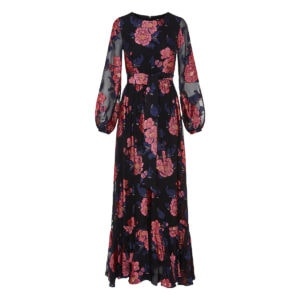 Dianora floral-embroidered long chiffon dress