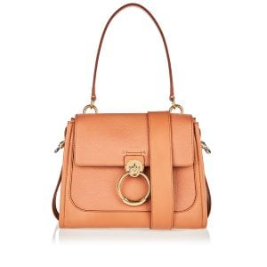 Small Tess Day leather bag